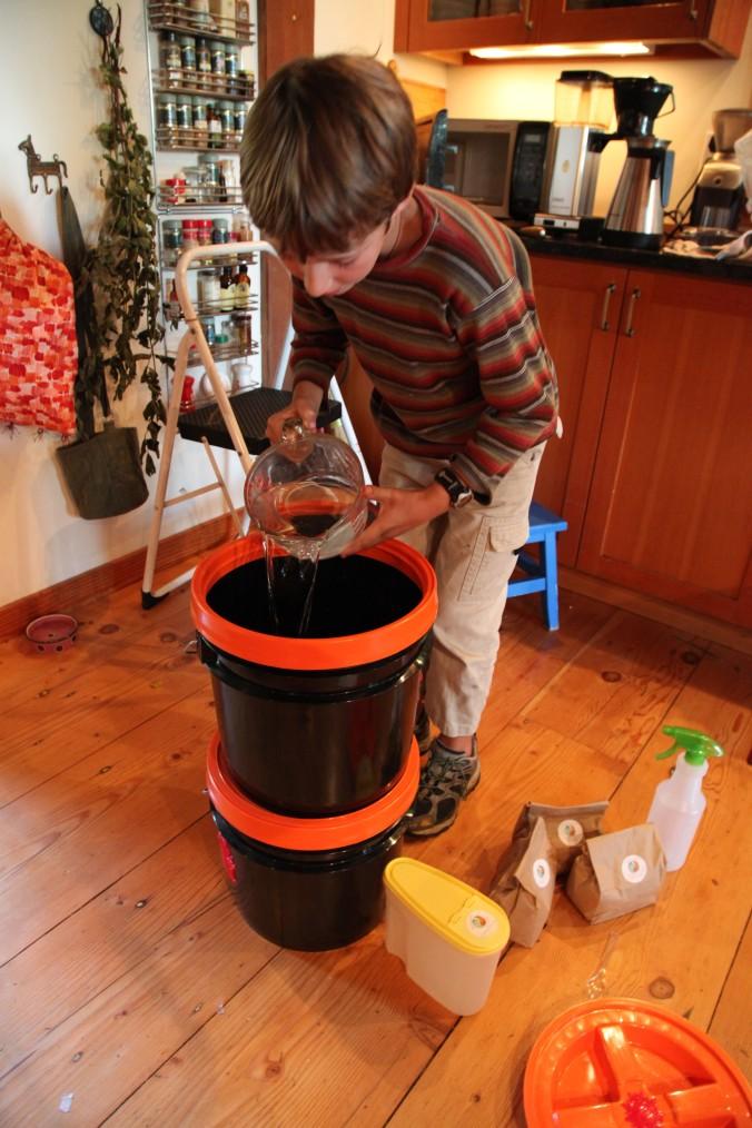 Bokashi Pet Waste experiment Day 1
