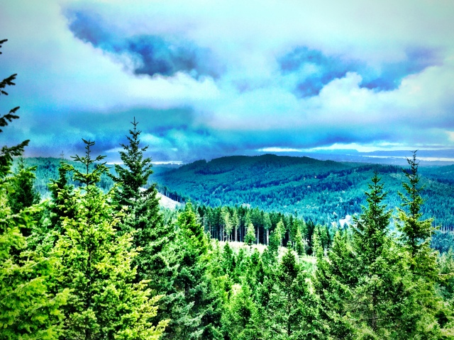 View From the Summit of Green Mountain. Summit #2, Kitsap County, WA. © Liesl Clark