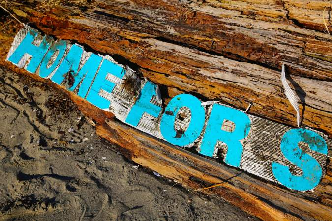 Beached Sign, Tattered By the Sea © Liesl Clark