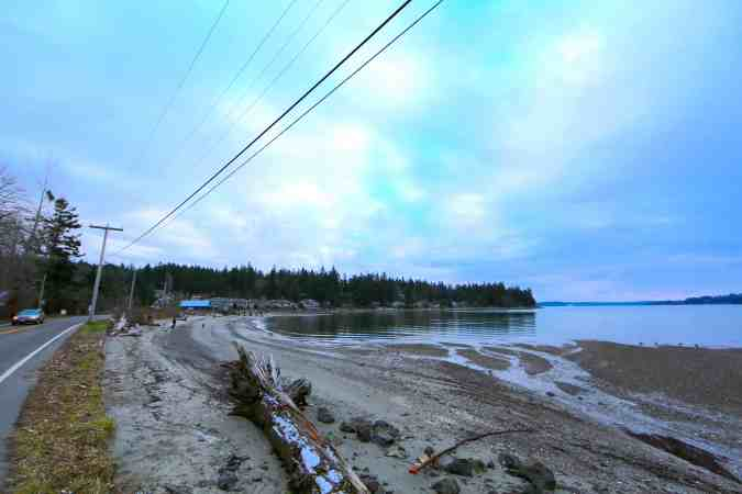 The Power Lines That Separate The Nesting Grounds From the Bay © Liesl Clark
