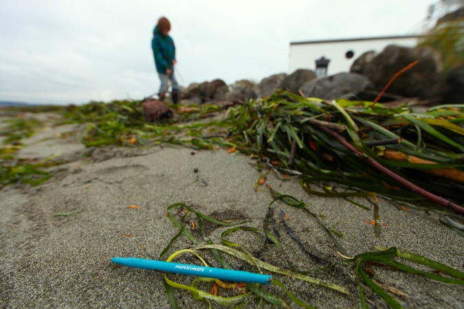 Papermate Washed Ashore at Point No Point, WA © Liesl Clark