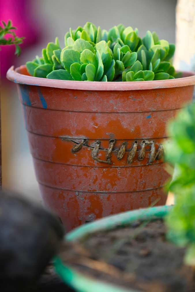 repair plastic pot